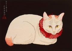 'Tama Cat'