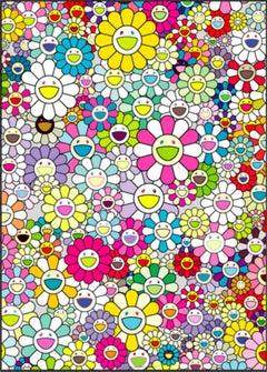 Shangri-La Shangri-La Multicolor
