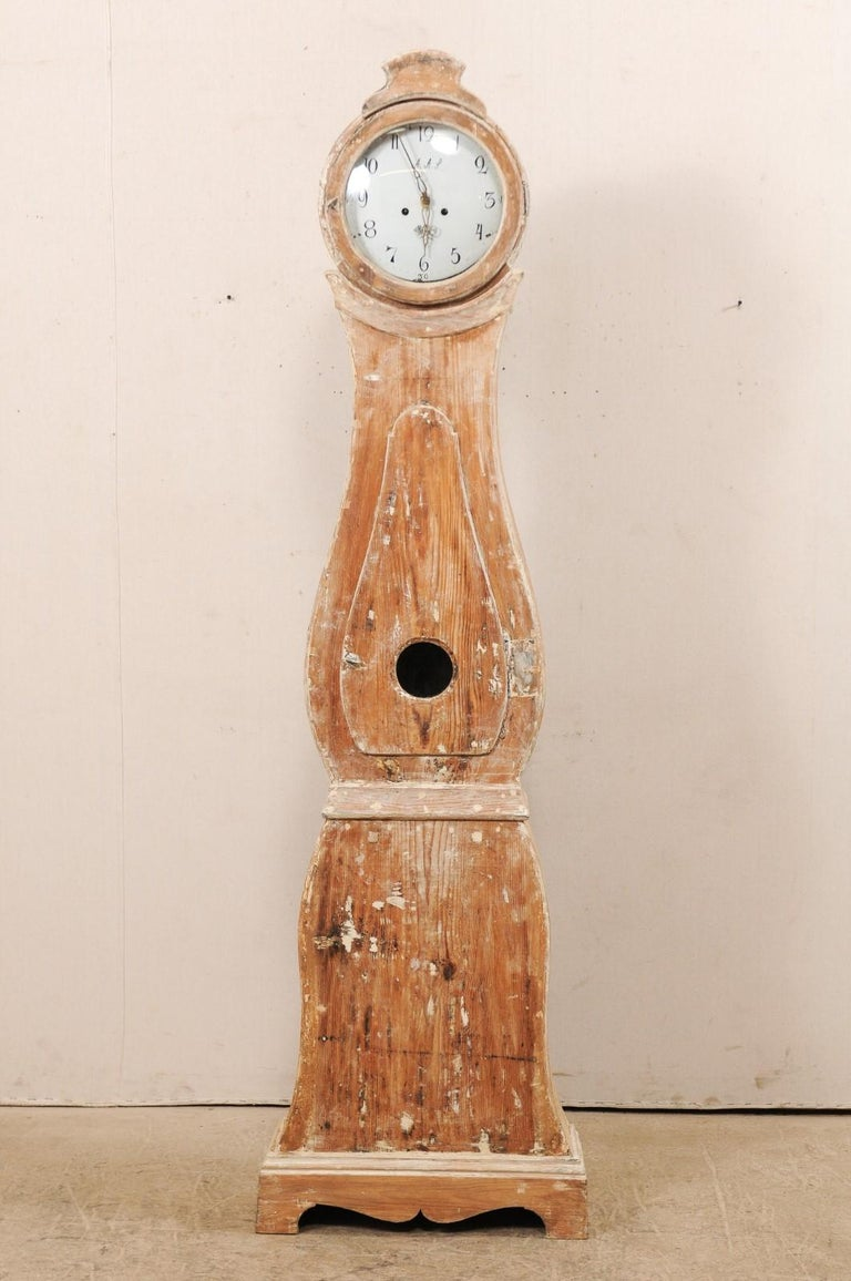 A 19th century Swedish grandfather clock. This antique tall clock from Sweden features a flattened arch shaped raised bonnet atop a round-shaped head, raindrop shaped body, neck and waist are accentuated with trim molding, and the body is supported
