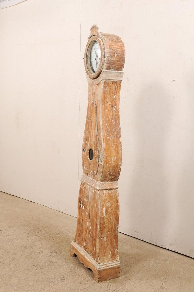 Gustavian Tall 19th Century Swedish Painted Wood Floor Clock For Sale