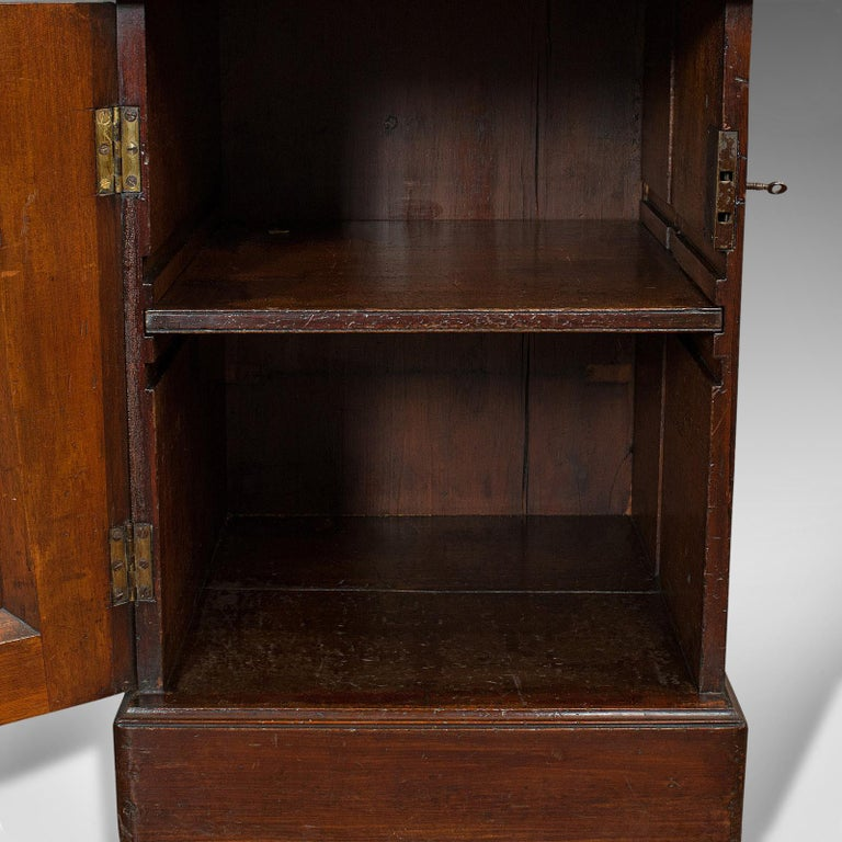 Tall Antique Side Cabinet, English, Mahogany, Bedside, Nightstand, Regency, 1820 For Sale 5