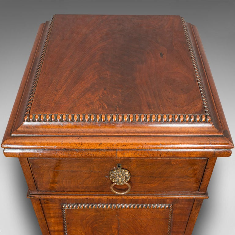 Tall Antique Side Cabinet, English, Mahogany, Bedside, Nightstand, Regency, 1820 For Sale 6