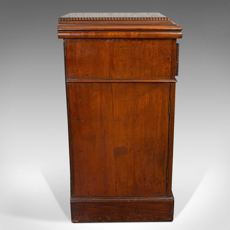 Tall Antique Side Cabinet, English, Mahogany, Bedside, Nightstand, Regency, 1820 In Good Condition For Sale In Hele, Devon, GB