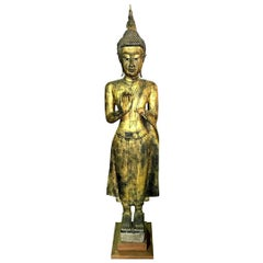 Tall Carved Wood and Gilt Standing Serene Temple Shrine Buddha