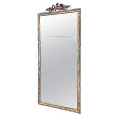 Tall Handsome Louis XVI Mirror