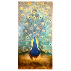 Tall Original Peacock Painting Signed