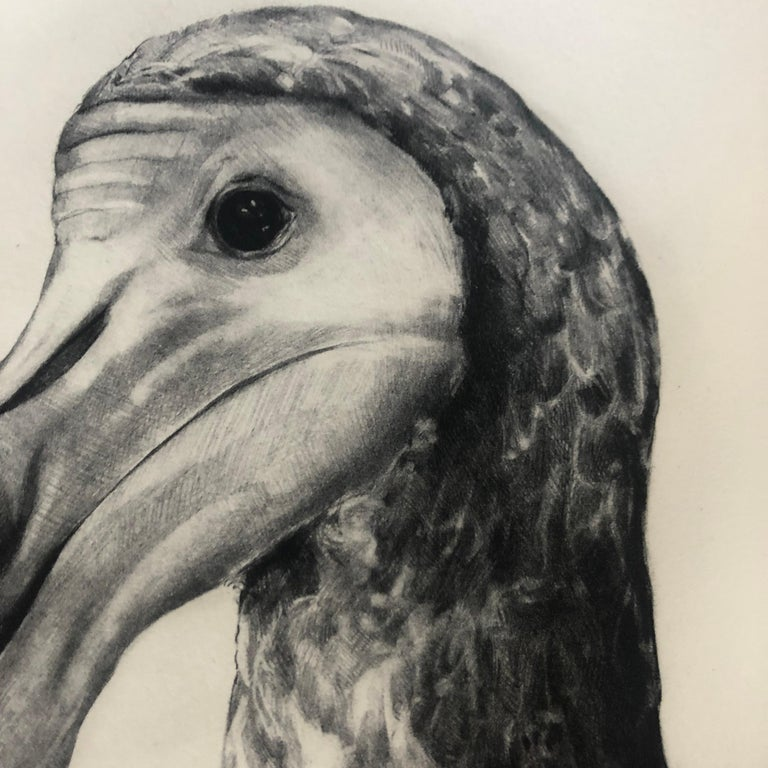 Rowland's Dodo (Version II) BY TAMMY MACKAY, Animal Art, Contemporary Prints For Sale 3