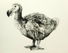 Rowland's Dodo (Version II) BY TAMMY MACKAY, Animal Art, Contemporary Prints