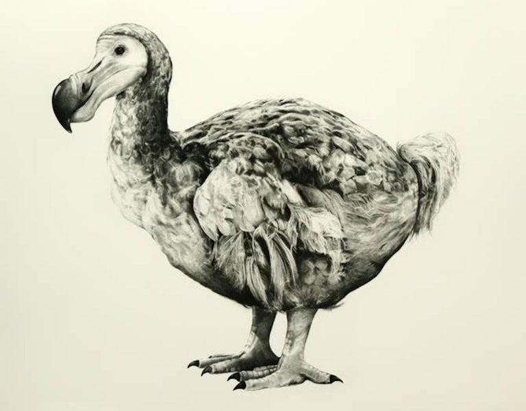 Tammy Mackay Animal Print - Rowland's Dodo (Version II) BY TAMMY MACKAY, Animal Art, Contemporary Prints