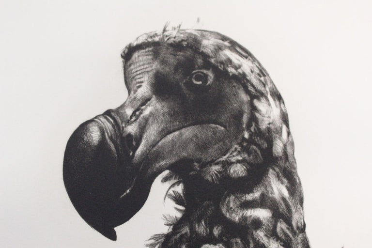 Tammy Mackay, Gone, Dodo Art, Contemporary Print, Affordable Art, Monochrome Art For Sale 1