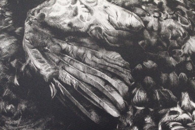 Tammy Mackay, Gone, Dodo Art, Contemporary Print, Affordable Art, Monochrome Art For Sale 4