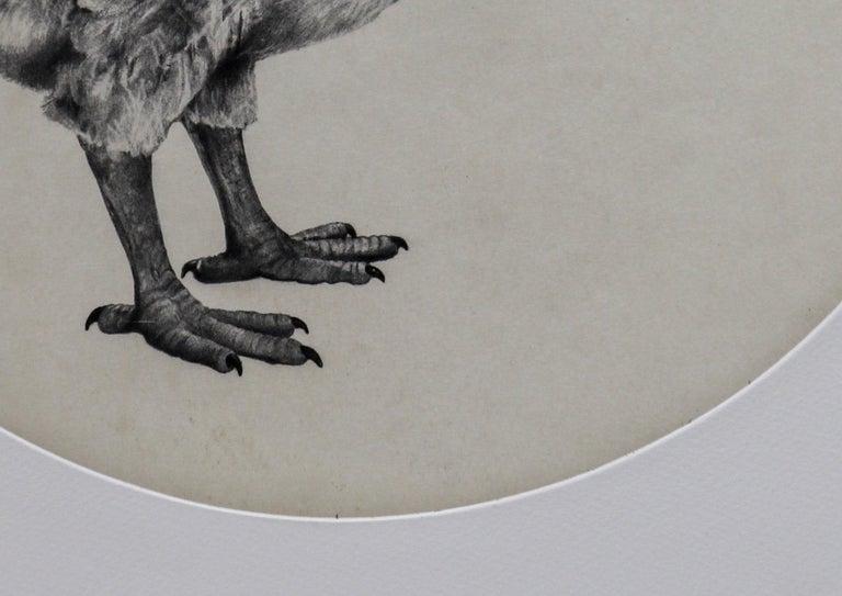 The Dutch Dodo, Tammy Mackay, Limited Edition Animal Print, Contemporary Art - Gray Still-Life Painting by Tammy Mackay