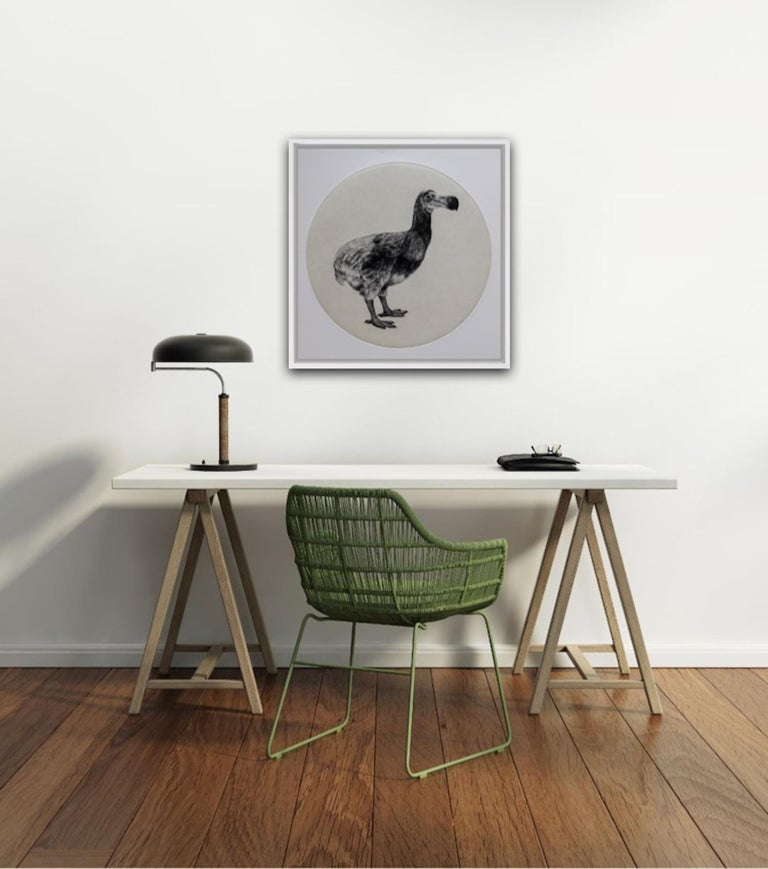 The Dutch Dodo, Tammy Mackay, Limited Edition Animal Print, Contemporary Art For Sale 2