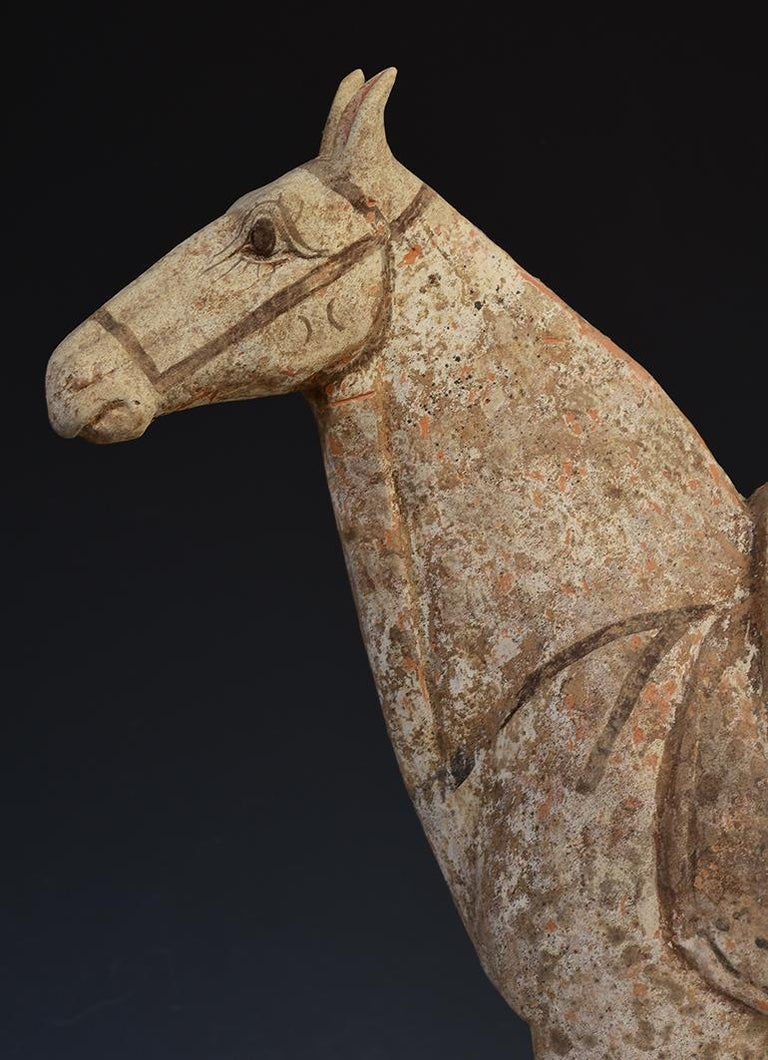 18th Century and Earlier Tang Dynasty, Chinese Pottery Standing Horse For Sale