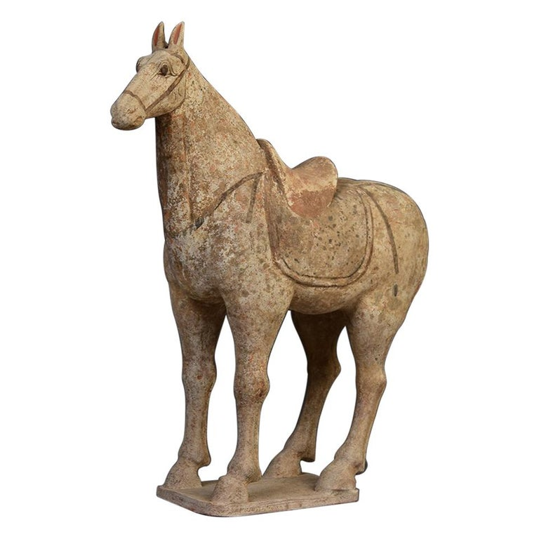 Tang Dynasty, Chinese Pottery Standing Horse For Sale