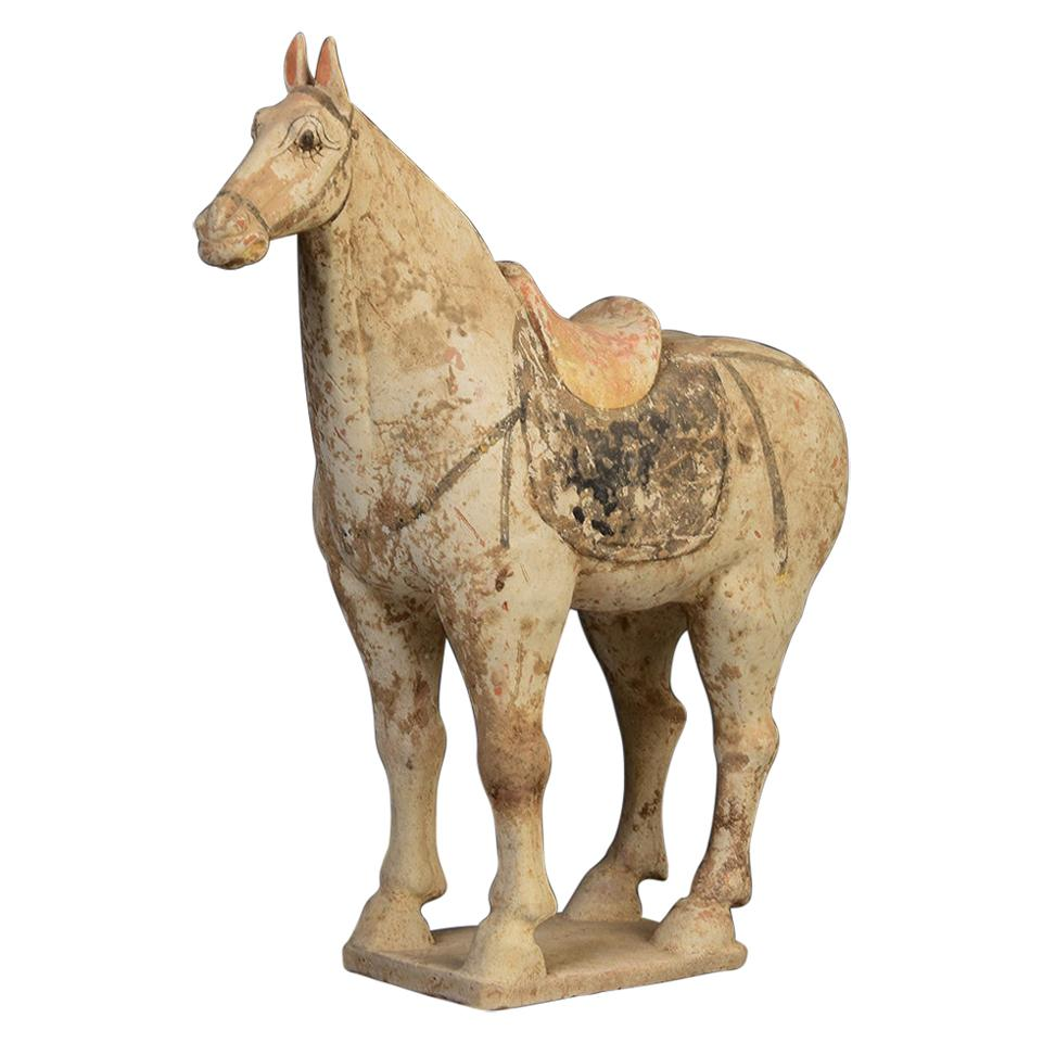 Tang Dynasty, Chinese Pottery Standing Horse
