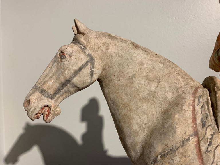 Tang Dynasty Horse and Rider, Painted Pottery, circa 9th Century, China For Sale 1