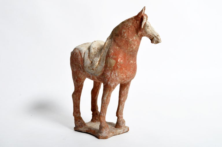 Tang Dynasty Horse In Good Condition For Sale In Chicago, IL