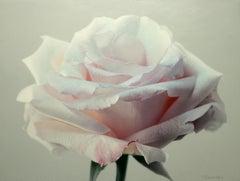 "Tatyana Klevenskiy ""Powder Pink"" 48"" x 36"" Oil on Canvas"