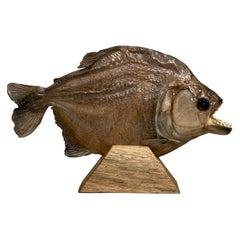 Taxidermy, Large Piranha on Wooden Stand, Piranha 3d