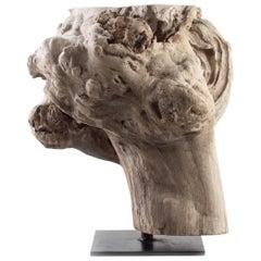 Teak Driftwood Organic Form End Table