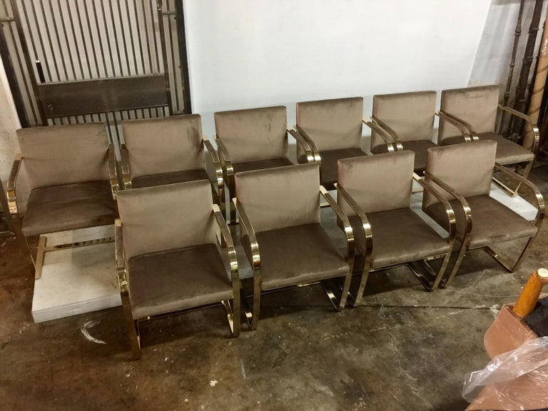 Ten '10' Vintage Solid Brass Brno Chairs by Ludwig Mies van der Rohe For Sale 5