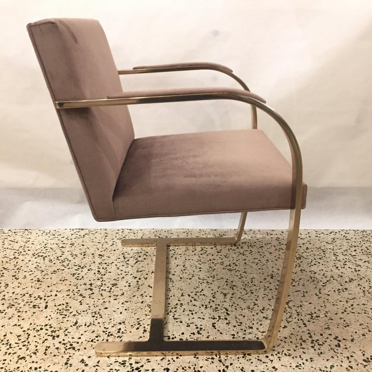 Mid-Century Modern Ten '10' Vintage Solid Brass Brno Chairs by Ludwig Mies van der Rohe For Sale