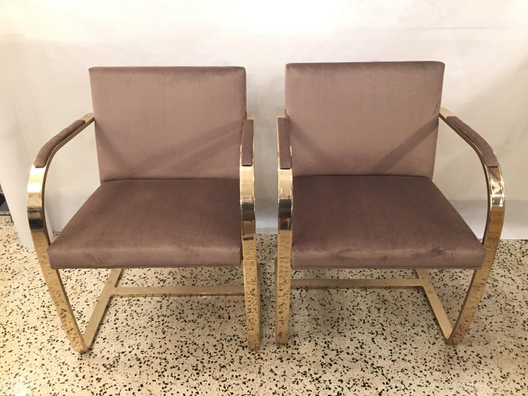 American Ten '10' Vintage Solid Brass Brno Chairs by Ludwig Mies van der Rohe For Sale