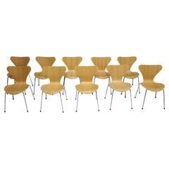 Ten Fritz Hansen Series 7 Chairs in Maple, Sold in Pairs
