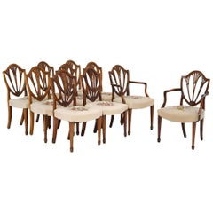 Ten George III Style Mahogany Hepplewhite Chairs, 19th Century
