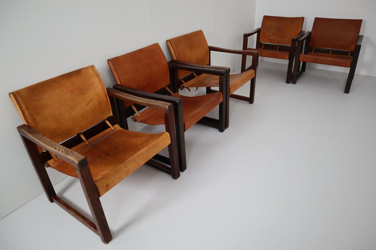 Ten Midcentury Safari Lounge Chairs in Patinated Cognac Saddle Leather, 1970s For Sale 1