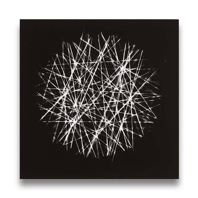 Tenesh Webber Black and White Photograph - Spiral II