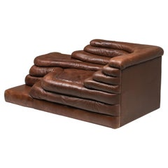 Terrazza Lounge Chairs in Brown Leather De Sede Ds 1025