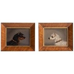 Terrier Portrait Paintings, England, circa 1920
