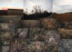 Fent's Prairie, Central Kansas, January