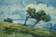 Together (bristlecone pines, high-alpine, Colorado)