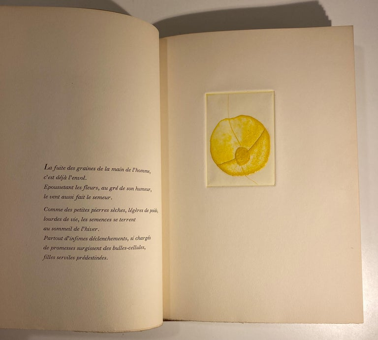 American Terry Haass Artist Book with Inscription to Dore Ashton For Sale
