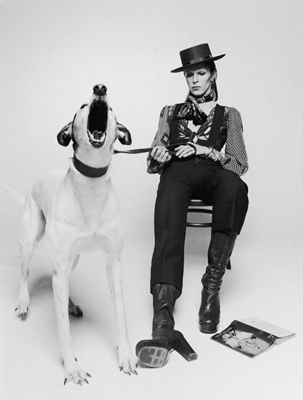 David Bowie, Diamond Dogs - Terry O'Neill, music, lifetime signed, 24x20 in.