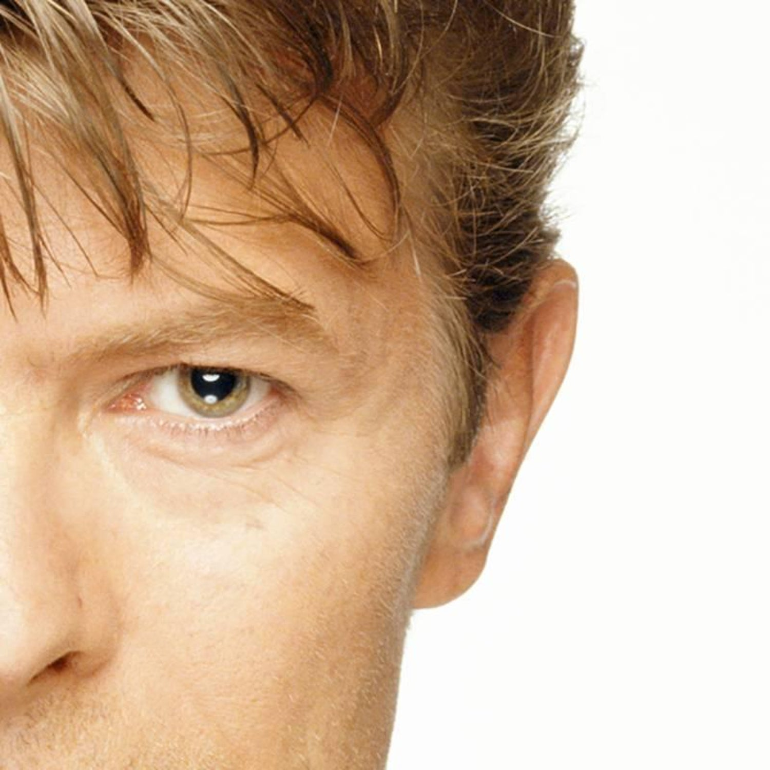 Terry Oneill David Bowie Eyes Photograph For Sale At 1stdibs