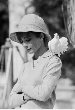 Terry O'Neill 'Audrey Hepburn Dove'