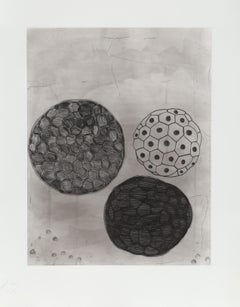 untitled 5 from Album, Etching by Terry Winters
