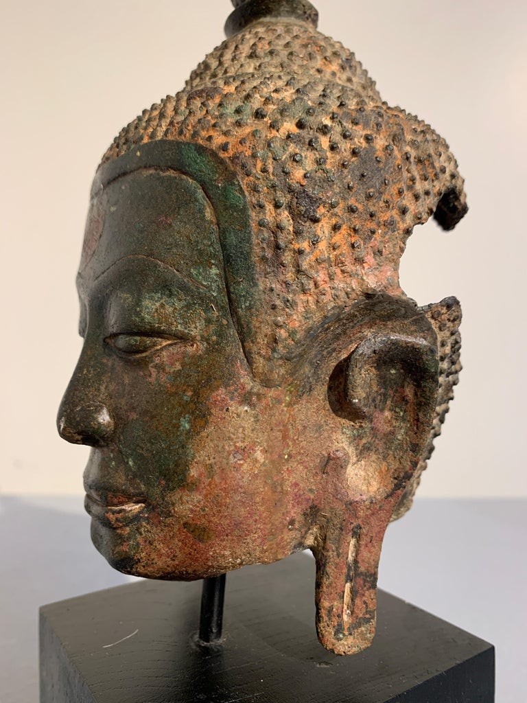 Thai Bronze Buddha Head, Ayutthaya Kingdom, U-Thong a Style, 14th Century For Sale 5