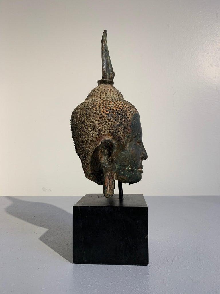 Thai Bronze Buddha Head, Ayutthaya Kingdom, U-Thong a Style, 14th Century For Sale 1