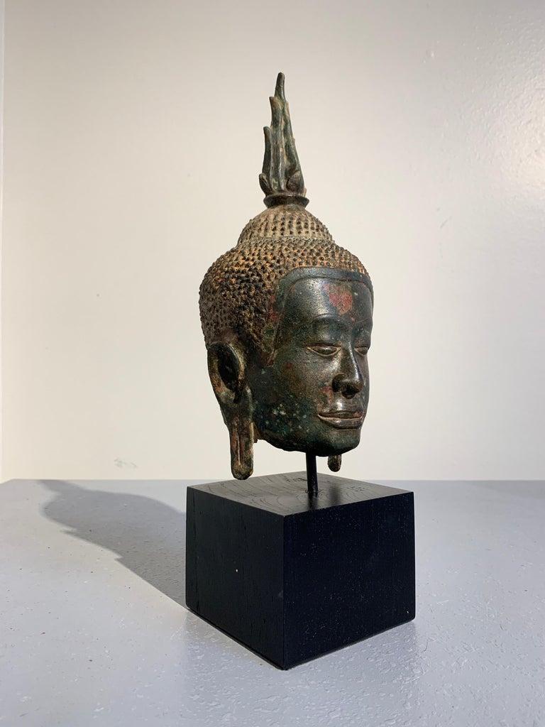 Thai Bronze Buddha Head, Ayutthaya Kingdom, U-Thong a Style, 14th Century For Sale 2
