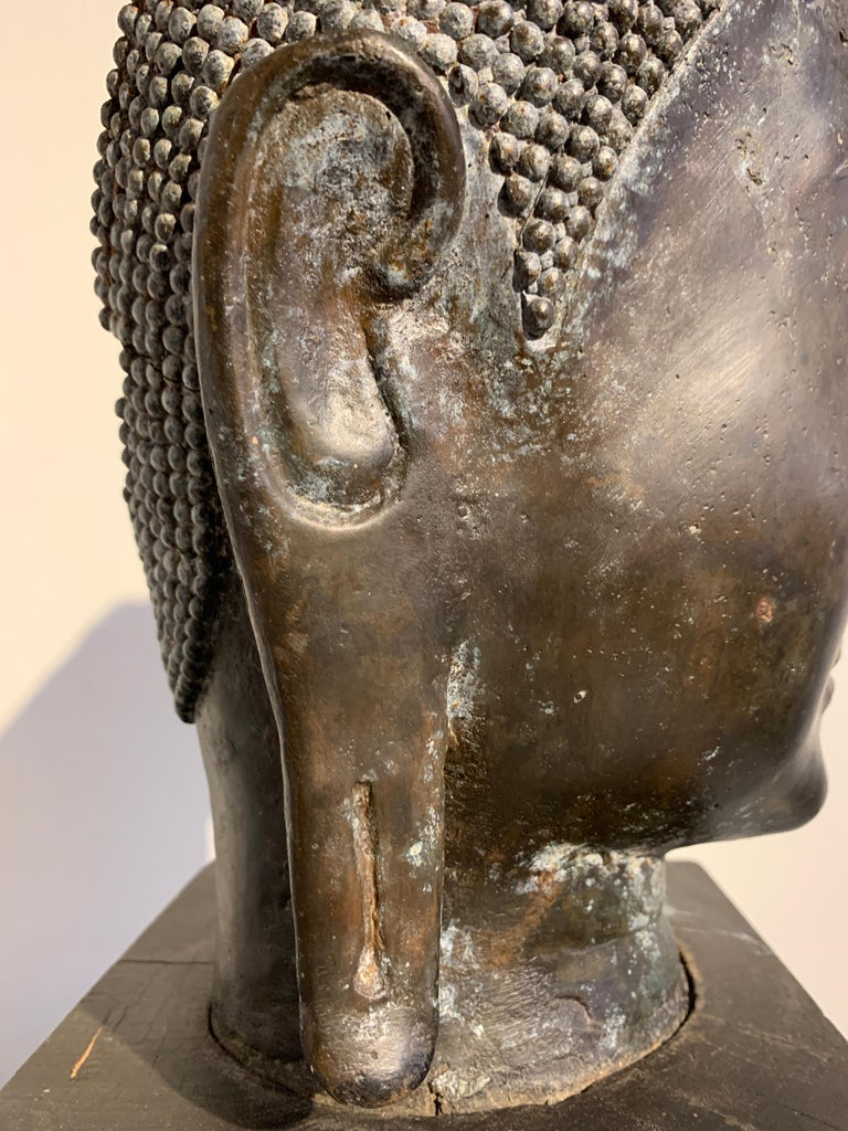 Thai Bronze Head of the Buddha, Ayutthaya U-Thong Style, 14th-15th Century For Sale 7