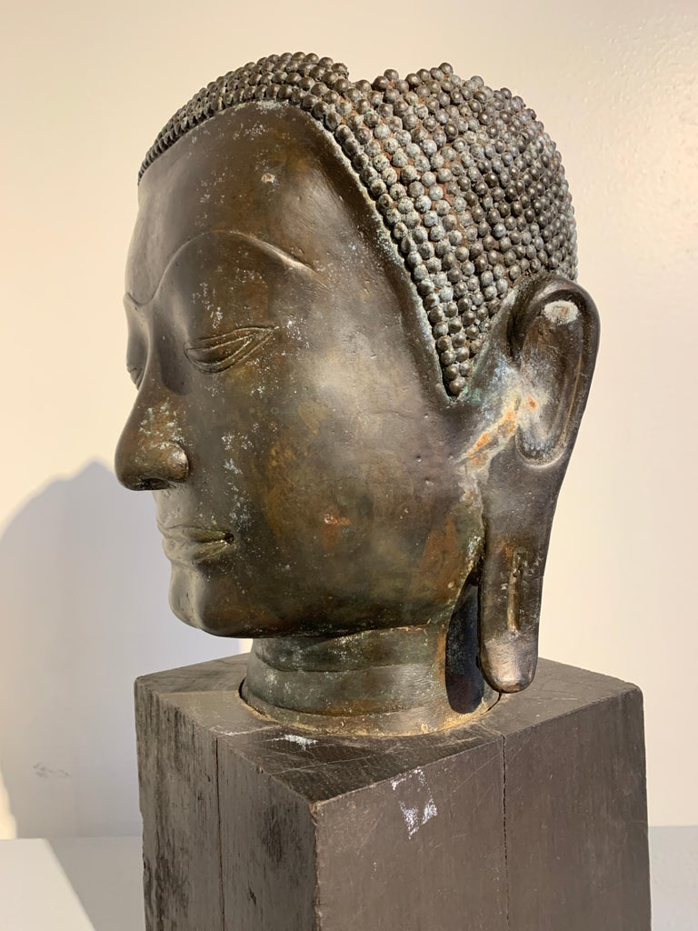 Thai Bronze Head of the Buddha, Ayutthaya U-Thong Style, 14th-15th Century For Sale 4