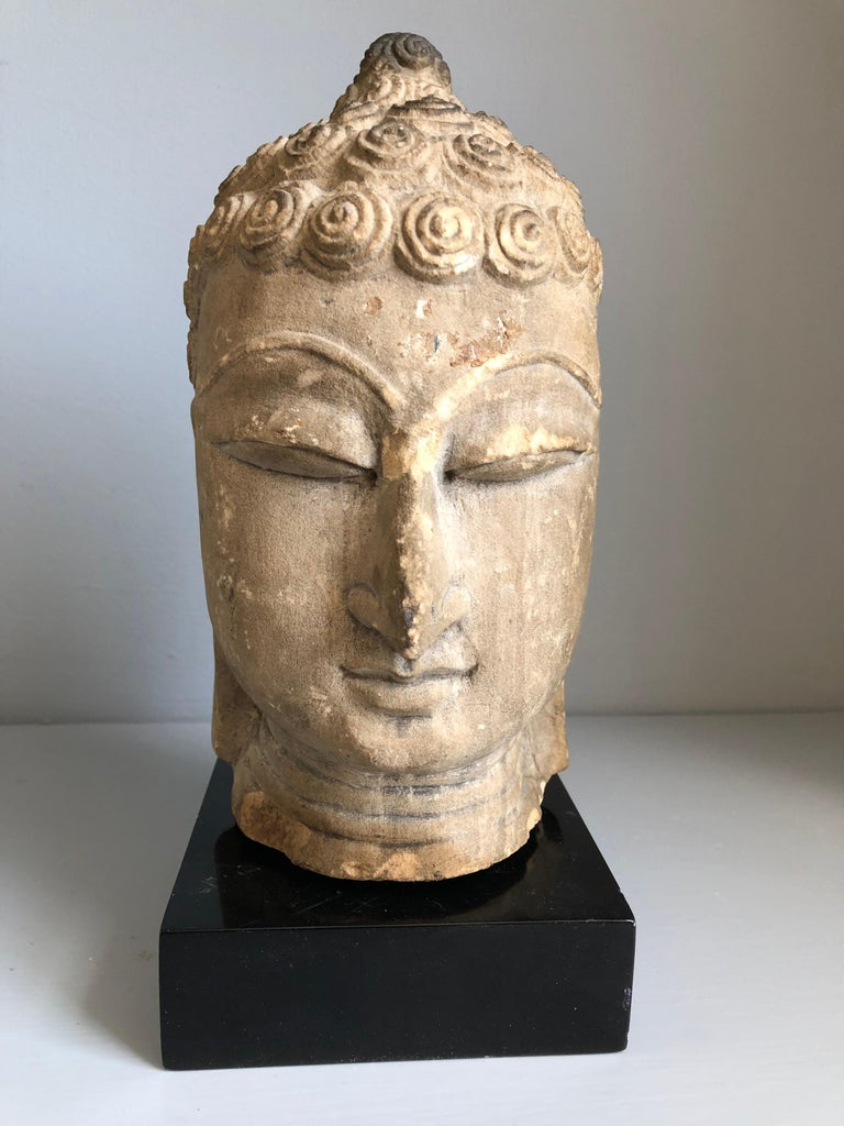 """A Thai Buddha head sculpture in sandstone, Ayutthaya period, 18th century or earlier, finely sculpted, depicting the Buddha in a serene meditating pose, with a custom black lacquer base (not attached). Head measures 5"""" diameter x 9"""" high."""