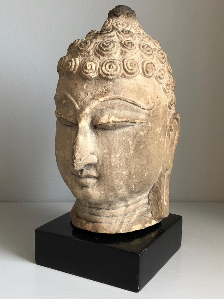 Thai Buddha Head, Ayutthaya Period 1