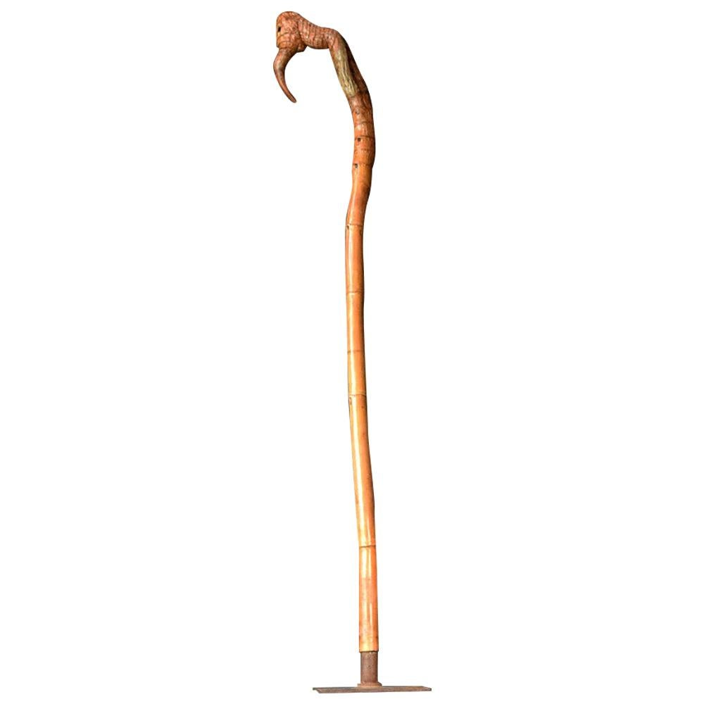 """""""The Bird Cane"""", Unusual Early 20th Century Walking Cane"""