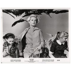 The Birds 1963 U.S. Silver Gelatin Single-Weight Photo